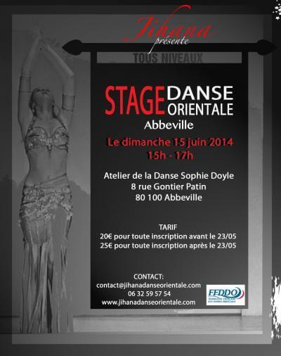 Stage abbeville 2014