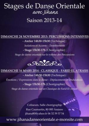 Stages Amiens Saison 2013-14